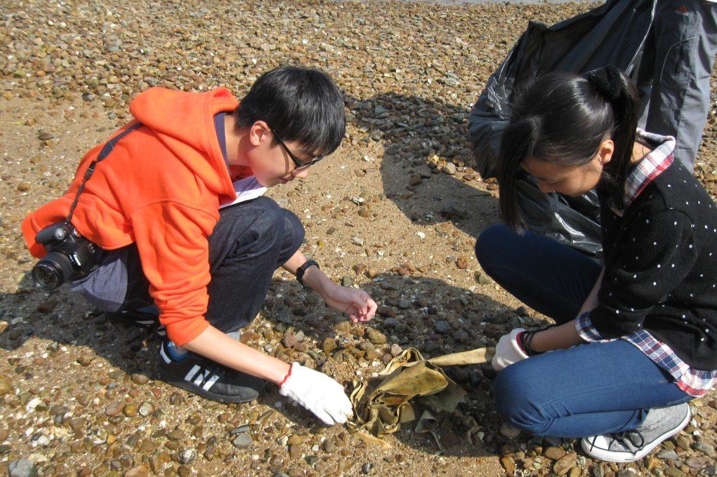 保育_Clean Shorelines